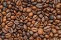 Coffee arabica beans freshly roasted Stock Photo