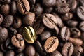 Coffee bean background Stock Image