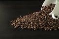 Coffee bean on black wood background