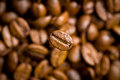Coffee bean on coffee beans background top view of Stock Photography