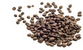 Coffee bean isolated fresh closeup in white background with clipping path Royalty Free Stock Images
