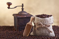 Coffee beans abundance with small sack and old grinder Stock Image