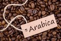 Coffee beans, Arabica Stock Images