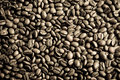 Coffee beans as texture Stock Photography