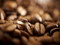 Coffee beans background close up extreme closeup of freshly roasted with in the Royalty Free Stock Photography