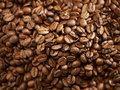 Coffee beans background of freshly roasted Stock Images