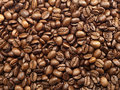 Coffee beans background of freshly roasted Stock Image