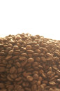 Coffee beans background with many Stock Images