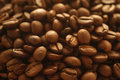 Coffee beans background with many Royalty Free Stock Photography
