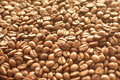 Coffee beans background with many Royalty Free Stock Image