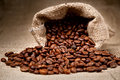 Coffee Beans in a Bag Stock Photography