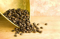 Coffee beans in brass scoop Stock Photos