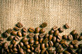 Coffee beans on burlap background the Stock Photography