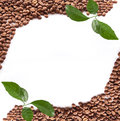 Coffee beans close up Royalty Free Stock Photo
