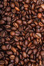 Coffee beans close up shot on white background Stock Image