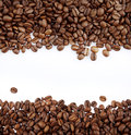 Coffee beans closeup of on plain background copy space Royalty Free Stock Photography