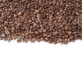 Coffee beans closeup of on plain background copy space Stock Photography