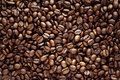Coffee beans closeup of roasted Royalty Free Stock Image