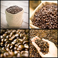 Coffee beans collage of seed grain Stock Images