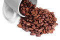 Coffee beans in a cup Royalty Free Stock Photos