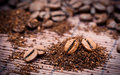 Coffee beans and granules Royalty Free Stock Images