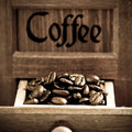 Coffee beans in grinder Stock Image