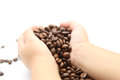 Coffee beans in the hands of a child Stock Images