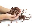 Coffee beans in the hands of a child Royalty Free Stock Images