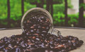Coffee beans have not been roasted Royalty Free Stock Images