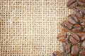 Coffee beans jute Royalty Free Stock Photo