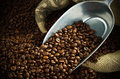 Coffee beans with a metal scoop Royalty Free Stock Photo