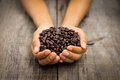 Coffee beans a person holding roasted on wood background Stock Image