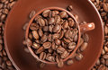 Coffee beans roasted close up Royalty Free Stock Photography