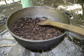 Coffee beans roasting large pot containing ripe that are over an outdoor fire Stock Photo