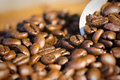 Coffee beans scoop close up Royalty Free Stock Photo