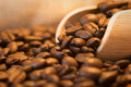 Coffee beans scoop close up warm lights Royalty Free Stock Photo