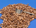 Coffee Beans and Scoop IV Stock Image