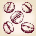 Coffee beans set hand drawn vector llustration sketch realistic Stock Photos