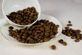 Coffee beans spilt on white plate Stock Images