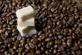Coffee beans and sugar Royalty Free Stock Photo
