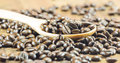 The coffee beans texture on the wood background selective focus wo worm toning Stock Photos