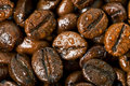Coffee Beans, Water drops Stock Image