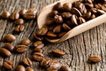 Coffee beans in wooden scoop Stock Images