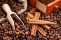 Coffee beans, wooden scoop and cinnamon Stock Images