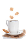 Coffee & Biscuit Royalty Free Stock Photo
