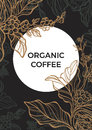 Coffee branch with leaves and coffee beans. Template. Vector