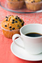 Coffee break with chocolate chip muffin Stock Photo