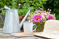 Coffee break mug watering can straw hat and flowers Royalty Free Stock Images