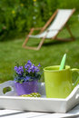 Coffee break tray with cup in garden Stock Photography