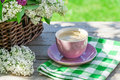 Coffee Cup And Colorful Lilac ...